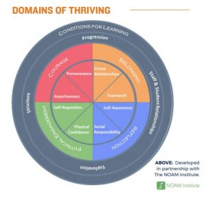 DomainsOfThriving
